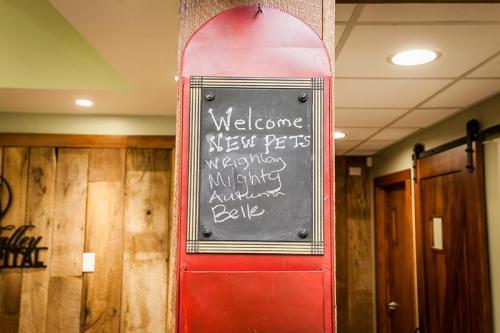 HardinValleyAnimalHospital Interior-Reception-Area-Signage-1